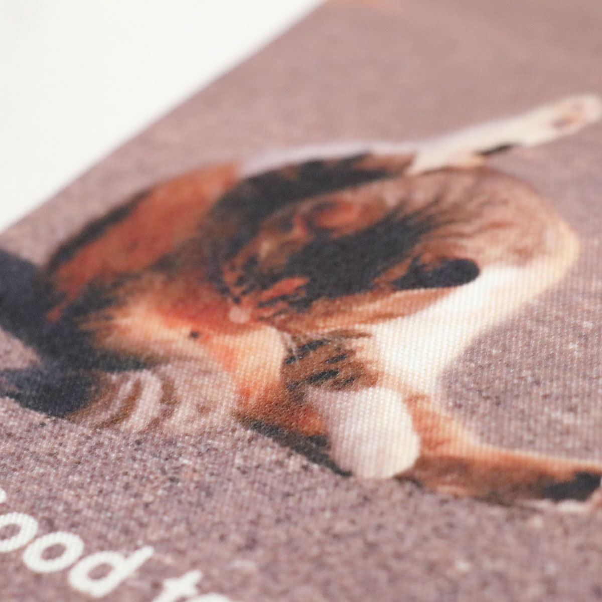 use-tote-cat-01-goodtaste