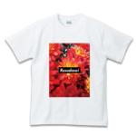 use-t-080-kusodasai-flower