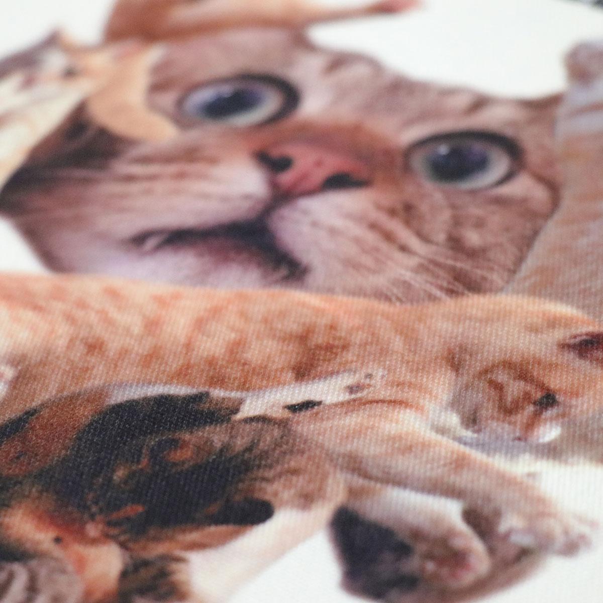 use-tote-cat-02-nekoshugo